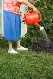 浇灌庭院的资深妇女 免版税库存照片
