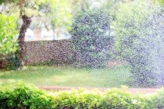 浇灌庭院 喷洒的小小滴反对太阳和绿叶的背景的水 免版税库存图片