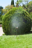 浇灌庭院 免版税库存图片