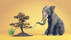 浇灌树的大象 免版税库存照片