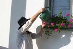 浇灌树的妇女 库存照片