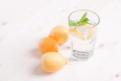 浇灌用柠檬和薄菏在一块玻璃在台式viewew 免版税库存照片
