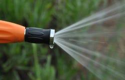 浇灌的庭院风景 免版税库存图片