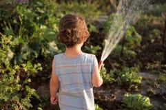浇灌的庭院 库存照片