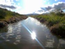 浇灌的放牧地带 免版税库存照片