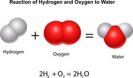 浇灌的氢和氧气的反应 向量例证