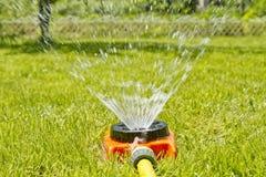 浇灌的绿色草坪 库存照片