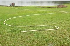 浇灌的绿草 库存图片