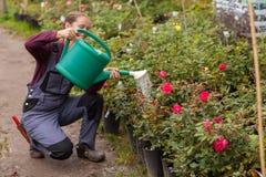 浇灌花的妇女花匠在庭院里 免版税库存照片