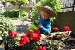 浇灌花的年轻男孩在庭院里 库存图片