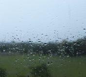 浇灌雨水滴在玻璃窗的 库存照片
