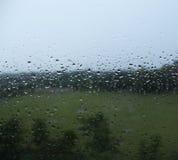 浇灌雨水滴在玻璃窗的 免版税库存照片