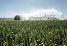 浇灌领域的灌溉枢轴 免版税库存图片