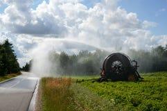 浇灌领域的灌溉枢轴 库存图片