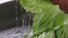浇灌飞溅在新鲜蔬菜上 影视素材