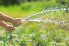 浇灌从水管的人庭院 免版税库存图片