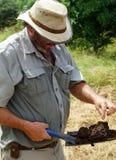 测试土壤 免版税库存照片