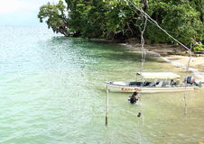 测试潜水用具的潜水者 库存照片