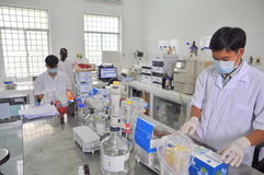 测试食物和海鲜的质量出口的在一个实验室在越南 免版税库存图片