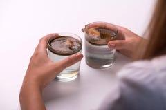 测试水的质量的在玻璃的女孩 免版税库存图片