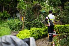 测量员做地籍图的测量 工作在绿色夏天公园的亚裔测量员 免版税库存图片