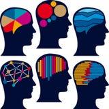 测量的脑子图 库存图片
