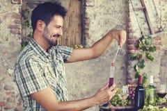 测量糖的百分比专家的葡萄酒酿造学 免版税库存照片