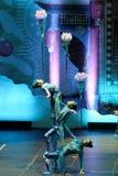 济南杂技马戏团在圣彼德堡,俄罗斯执行 免版税图库摄影