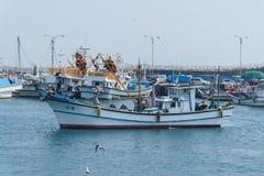 济州特别自治道,韩国- 2015年4月10日:在Moseulpo po的渔船 免版税图库摄影
