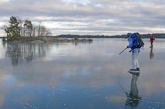浏览滑冰 免版税库存照片