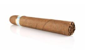 浓厚雪茄 库存图片