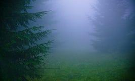 浓厚雾 免版税图库摄影