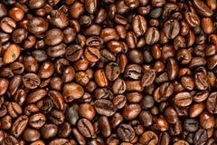 浓咖啡豆 库存照片