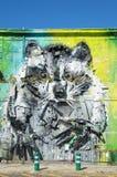 浣熊艺术设计油漆 库存照片