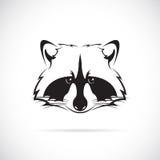 浣熊面孔的传染媒介图象 免版税库存图片