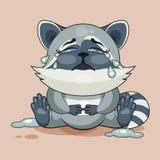 浣熊崽哭泣 图库摄影