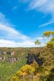 浩大的玉树森林和山美丽如画的风景在壮观的天空下 蓝色山,澳洲 库存图片