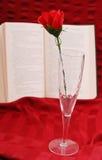 浪漫书的香槟 免版税库存照片