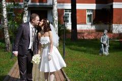 浪漫亲吻新娘和新郎 免版税库存照片