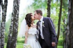 浪漫亲吻新郎和愉快的新娘 图库摄影