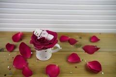 浪漫冬天季节摄影图象用作为有微笑的睡觉的雪人被塑造的蛋白软糖在冰了在红色玫瑰花瓣 免版税库存照片