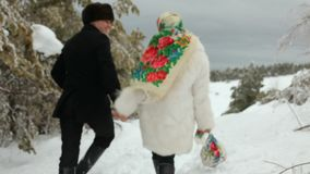 浪漫冬天步行 股票视频