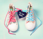 浪漫华伦泰概念 夫妇联系想法 鞋子对 免版税库存图片