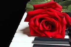 浪漫在钢琴的键盘上升了在黑背景的 图库摄影