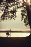 浪漫夫妇坐长凳 库存照片