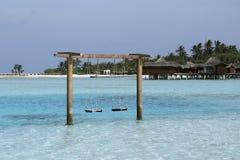 浪漫摇摆直接到turquise水里在马尔代夫是 图库摄影