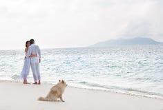 浪漫新夫妇的照片在海岸的 免版税库存图片