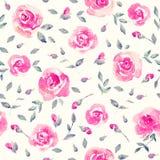 浪漫桃红色玫瑰-花卉无缝的样式 免版税图库摄影