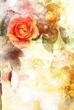 浪漫橙色玫瑰背景 免版税库存照片