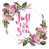 浪漫水彩玫瑰色花花圈框架 免版税库存图片